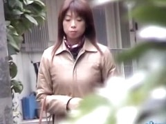 Sweet dreamy Japanese girl is having sharking affair with some lusty lad