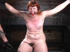 Barbary Rose & The Pope in Pain Slut In Extreme Bondage Suffers From Brutal Torment - HogTied