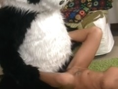 Sex toy party with a excited panda bear