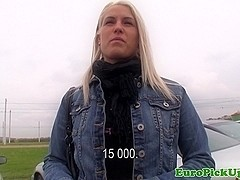 Picked up euro Beata pussyfucked in restroom