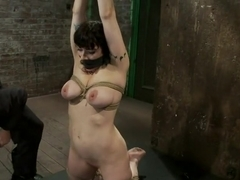 Actual member of the site applies to model & is accepted.This big titted MILF is bound & abused.