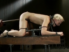 Tall blonde bound and fucked into oblivion