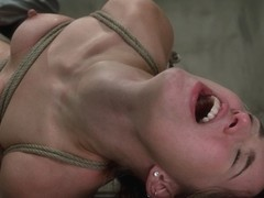 Calico in Classic Shoot Calico: Sex Addict Can She Be Cured? Why Would We Want That? - HogTied