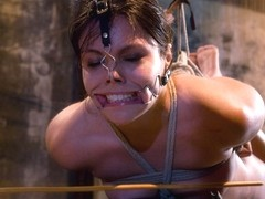 Thea Marie in The Smile Has Been Wiped Off Thea's Face  - HogTied