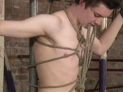 The Master Needs That Twink Cum! - Eli Manuel  Sebastian Kane - Boynapped