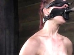 Restrained Gagged Sub Toyed By Maledom