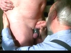 Stiff cocks and collar