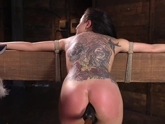 Hogtied Brunette Anal Toyed And Pussy Fisted