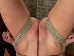 Hogtied Mangles Cherry Torn